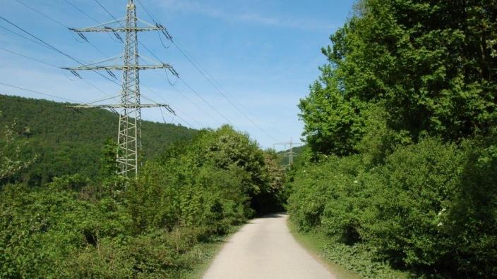 Das Bild zeigt den Fuß- und Radweg entlang des Hengsteysees