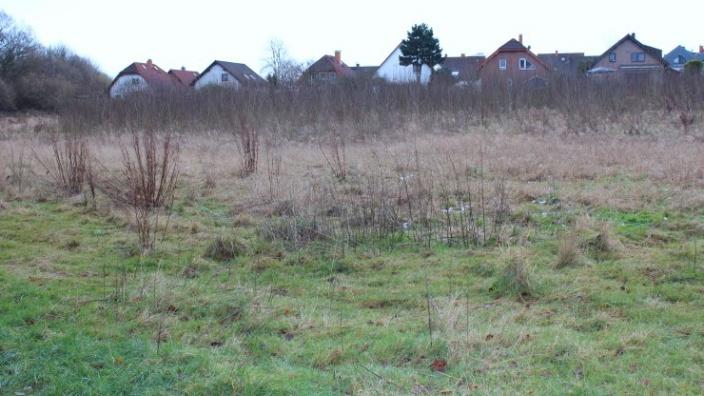 Das Foto zeigt das Grundstück des künftigen Feuerwehrgerätehauses.